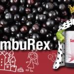 Raceala si Gripa: Intarirea Imunitatii Gratis cu Pachetul Samburex